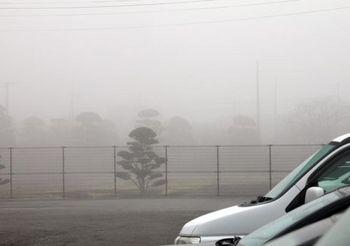 1523 1月の濃霧.jpg