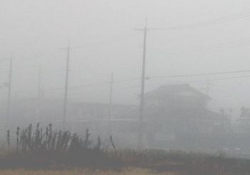 2249 濃霧2013年12月.jpg