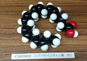 4986 分子模型201607-12.jpg