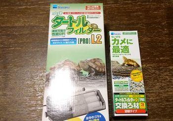 6450 亀のお世話201710-1.JPG