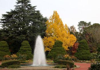 6602 植物園2017-24.JPG
