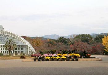 6608 植物園2017-26.JPG