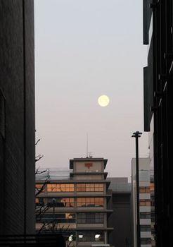 6921 京都駅201803-5.JPG