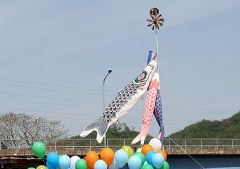 869 こいのぼり2012-1.jpg