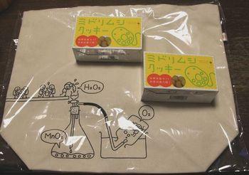5560-1 お出かけ土産201701-2.jpg